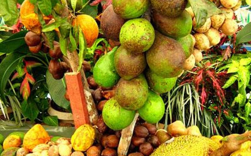 حديقة الفواكه الإستوائية في بينانج