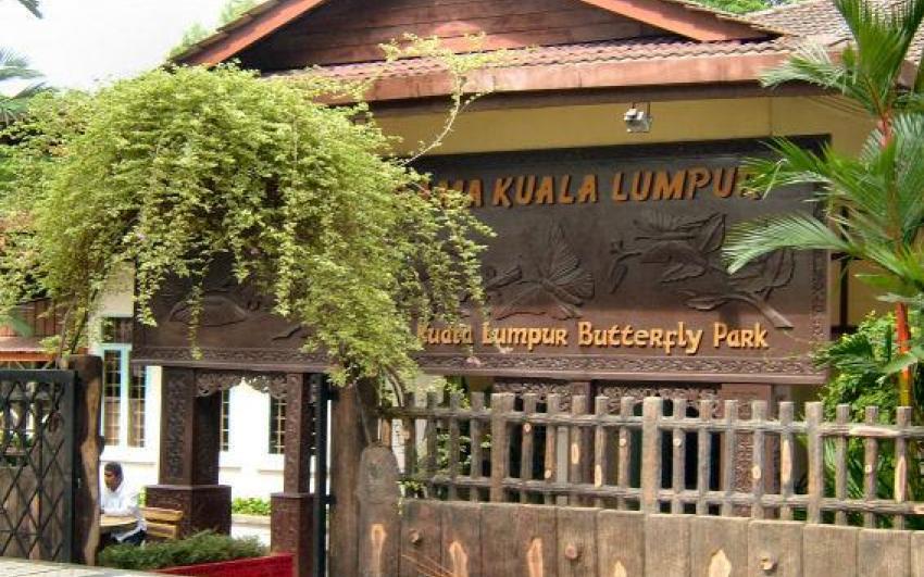 حديقة الفراشات ماليزيا