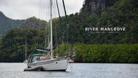 رحلة المانغروف - في ماليزيا