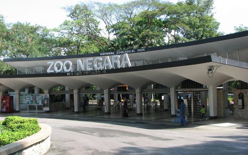 حديقة الحيوانات الوطنية
